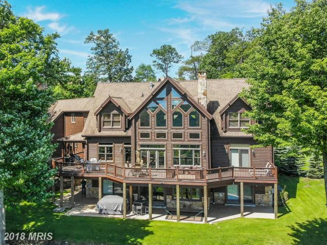 40 Mountain Overlook Court, McHenry, MD 21541 (#GA10277105) :: The Bob & Ronna Group