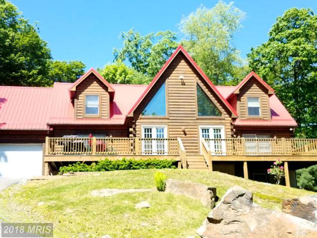 412 Tanglewood Drive, Oakland, MD 21550 (#GA10305861) :: The Maryland Group of Long & Foster