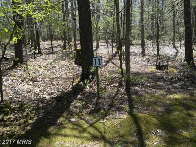 LOT 11 Wood Ridge Road, Swanton, MD 21561 (#GA8660915) :: Pearson Smith Realty