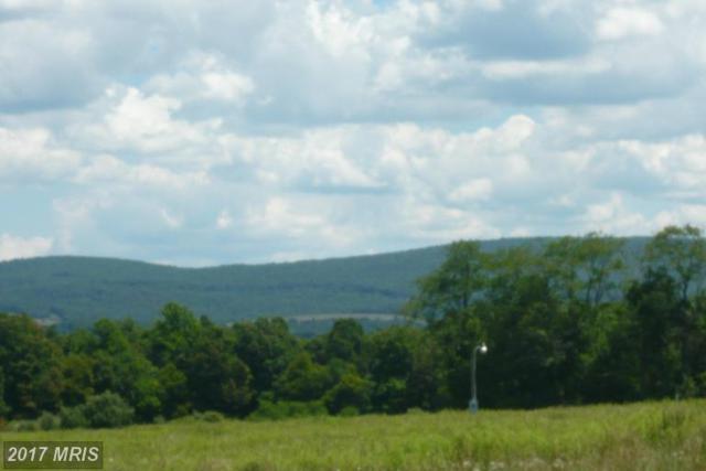 Frazee Ridge Road, Friendsville, MD 21531 (#GA9912326) :: Pearson Smith Realty