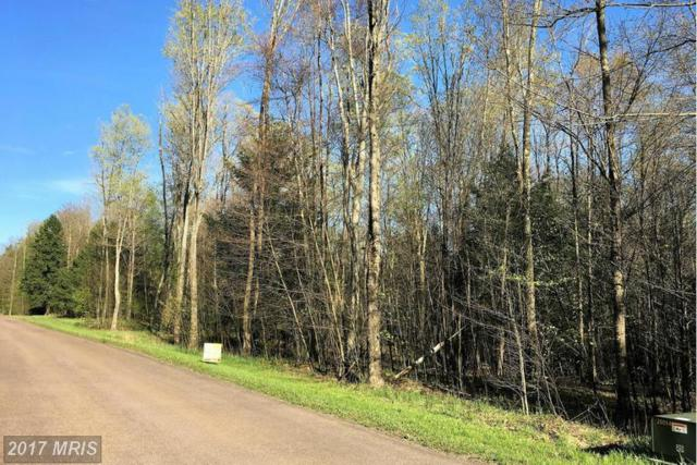 LOT 21 Walnut Drive, Grantsville, MD 21536 (#GA9936304) :: LoCoMusings