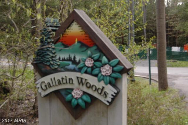 6 Gallatin Spur, Oakland, MD 21550 (#GA9945421) :: LoCoMusings