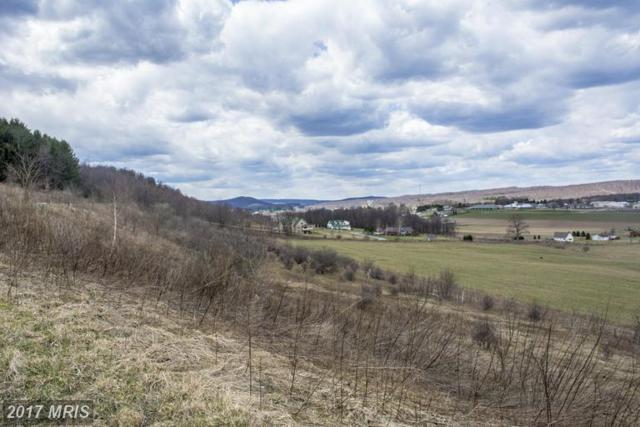Klotz Farm Drive, McHenry, MD 21541 (#GA9958770) :: LoCoMusings