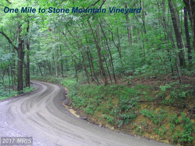 2455 Wyatt Mountain Road, Dyke, VA 22935 (#GR10005271) :: RE/MAX Cornerstone Realty