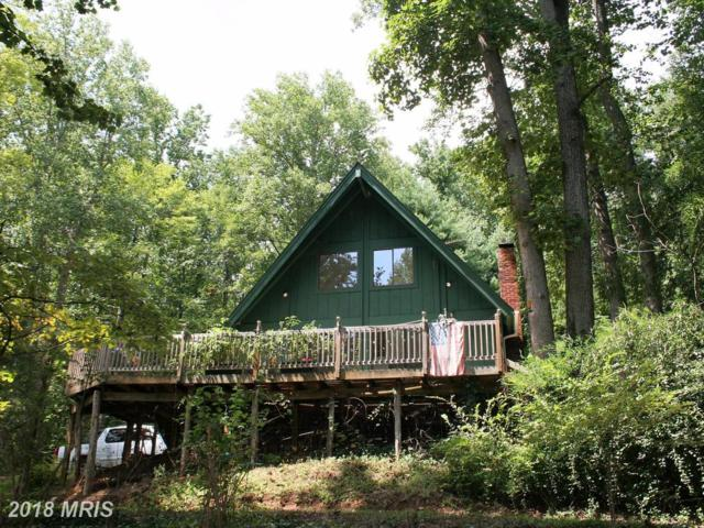 326 Wilderness Lane, Stanardsville, VA 22973 (#GR10035686) :: LoCoMusings