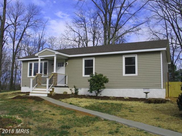 19 Holmes Run Road, Stanardsville, VA 22973 (#GR10167887) :: RE/MAX Cornerstone Realty
