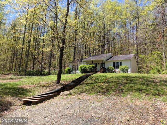 435 Greene Acres Road S, Stanardsville, VA 22973 (#GR10221351) :: RE/MAX Cornerstone Realty