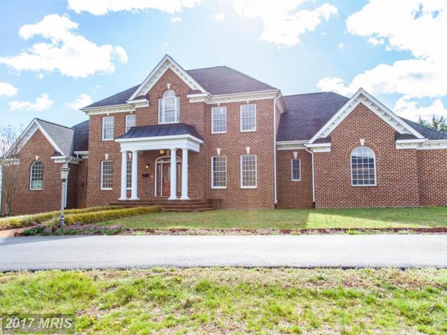 185 Lexington Way, Stanardsville, VA 22973 (#GR9964892) :: Pearson Smith Realty