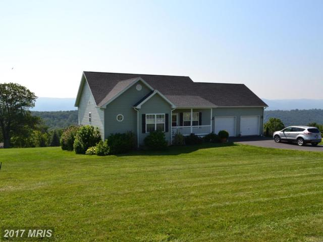67 Brynner Drive, Petersburg, WV 26847 (#GT10009354) :: Pearson Smith Realty
