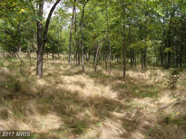 Lot 3 Lower Vista View Lane, Arthur, WV 26847 (#GT10044546) :: Pearson Smith Realty