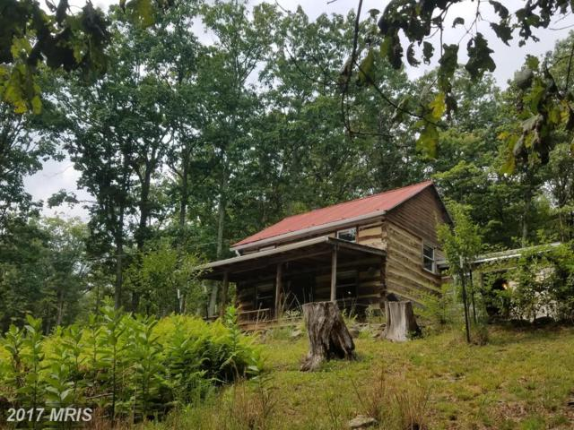 1845 Watchford Road, Cabins, WV 26855 (#GT10047221) :: Pearson Smith Realty