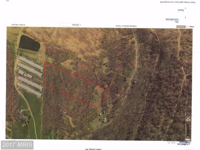 7 ACS OFF COUNTRY Road, Maysville, WV 26833 (#GT10070268) :: LoCoMusings