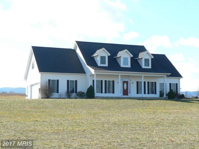155 Harman Lane, Petersburg, WV 26847 (#GT10099050) :: Hill Crest Realty