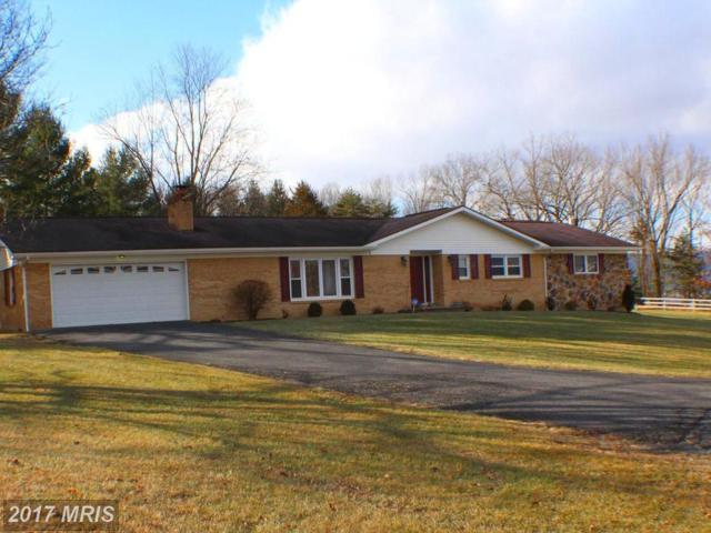 19 Overlook Drive, Petersburg, WV 26847 (#GT10126225) :: Pearson Smith Realty