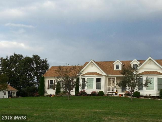 58 Brynner Drive, Petersburg, WV 26847 (#GT10133274) :: Pearson Smith Realty