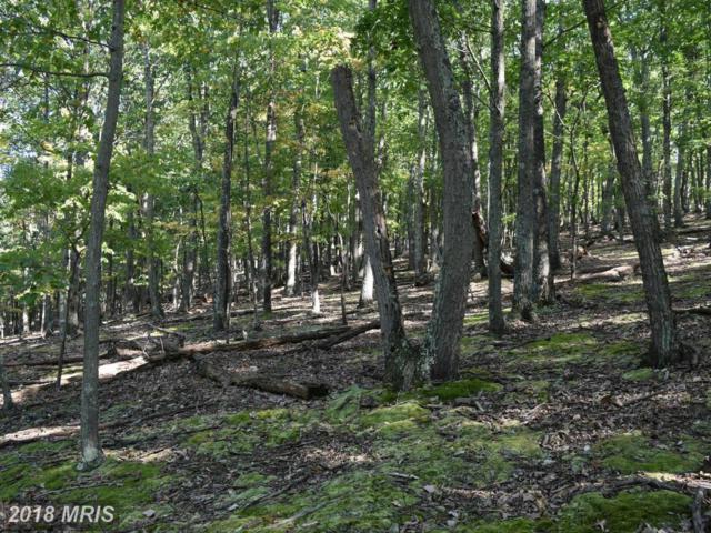 Woodpecker Lane, Maysville, WV 26833 (#GT10191989) :: Hill Crest Realty
