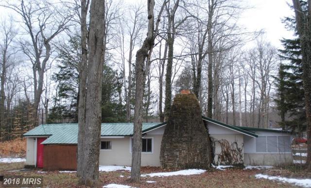 148 Village Road, Mount Storm, WV 26739 (#GT10193029) :: Hill Crest Realty