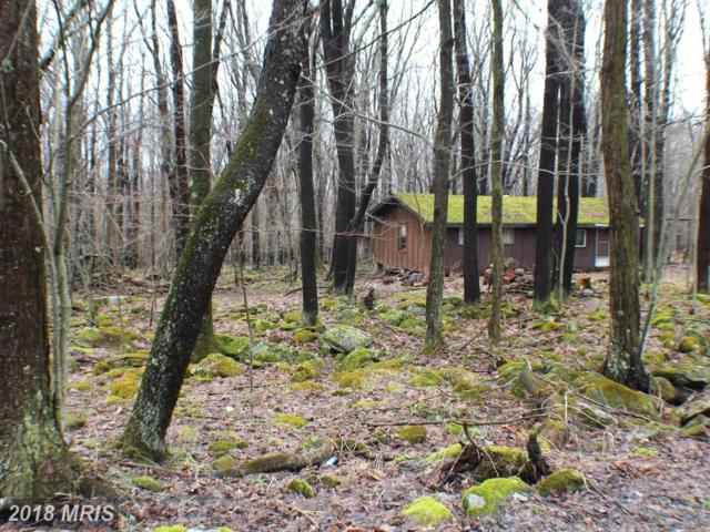 1900 Cherry Ridge Road, Mount Storm, WV 26739 (#GT10193966) :: Hill Crest Realty