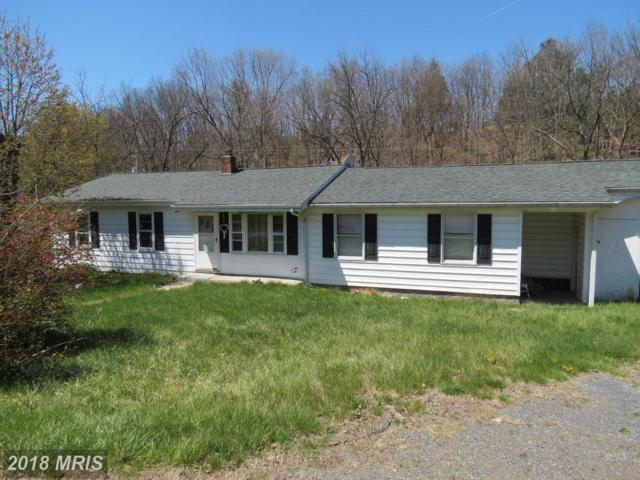 374 Possum Hollow Rd Road, Maysville, WV 26833 (#GT10209635) :: Hill Crest Realty