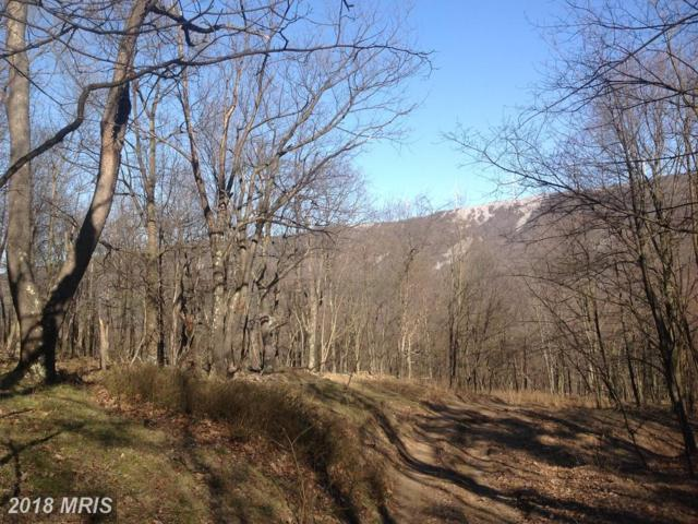 63 Sit Back Rd. Off 93 East, Mount Storm, WV 26739 (#GT10218217) :: The Nemerow Team