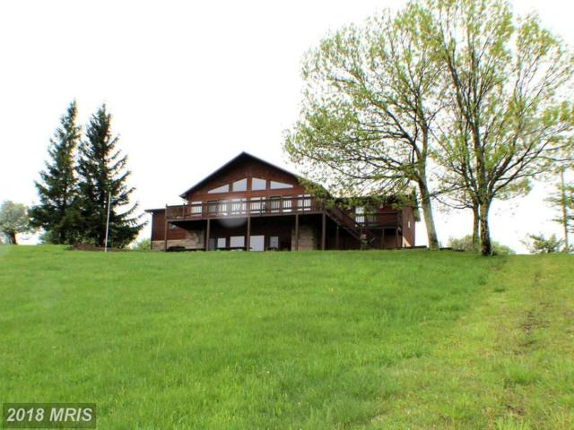 366 Geary Way, Mount Storm, WV 26739 (#GT10248255) :: The Riffle Group of Keller Williams Select Realtors