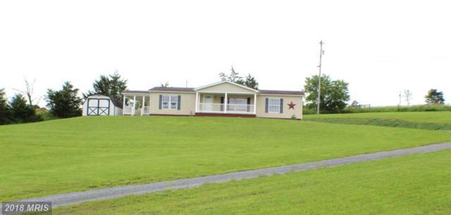 120 Dewey Drive, Maysville, WV 26833 (#GT10274140) :: Keller Williams Pat Hiban Real Estate Group