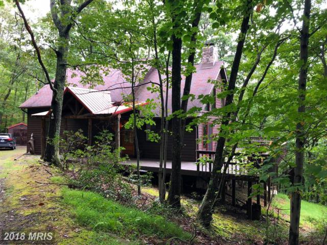 468 Red Fox Road, Maysville, WV 26833 (#GT10346037) :: The Withrow Group at Long & Foster