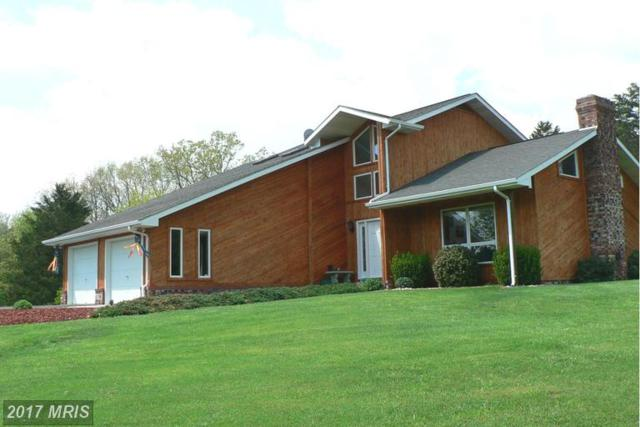 30 Lower Hickory Lane, Petersburg, WV 26847 (#GT9929820) :: Pearson Smith Realty
