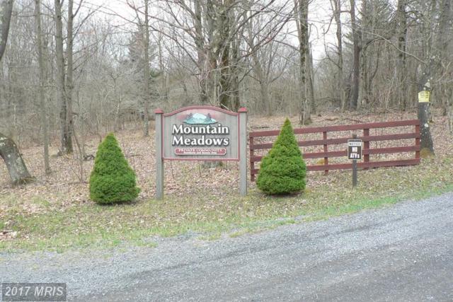 LOT 4 Mt Meadows Lakeside, Mount Storm, WV 26739 (#GT9938215) :: LoCoMusings