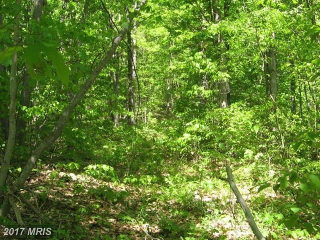 1 Apple Tree Lane, Moorefield, WV 26836 (#HD10023034) :: LoCoMusings