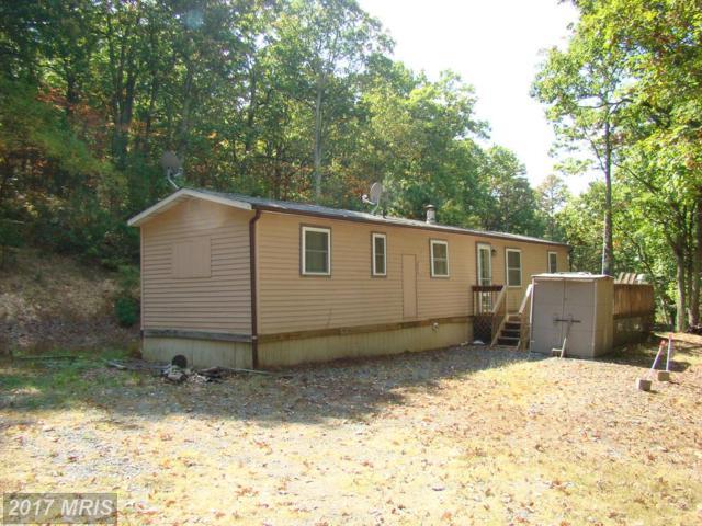 4332 Pine Ridge Road, Wardensville, WV 26851 (#HD10069533) :: LoCoMusings