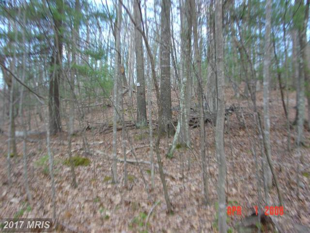 64-C  TROUT POND, Lost City, WV 26810 (#HD10075593) :: Pearson Smith Realty