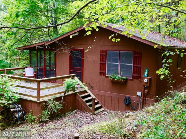185 Hunters Ridge, Lost River, WV 26810 (#HD10082252) :: LoCoMusings