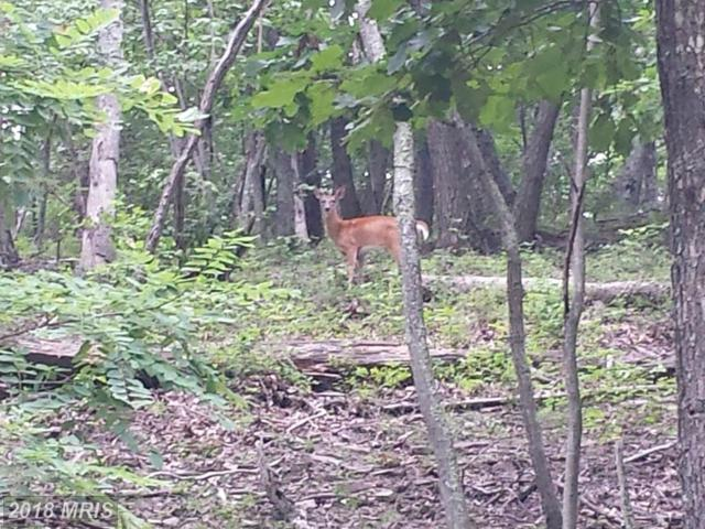 179 Lockinger Ridge, Moorefield, WV 26836 (#HD10132770) :: Pearson Smith Realty