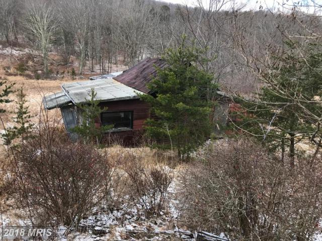 Off Of Co Rt 8, Baker, WV 26801 (#HD10153691) :: Hill Crest Realty