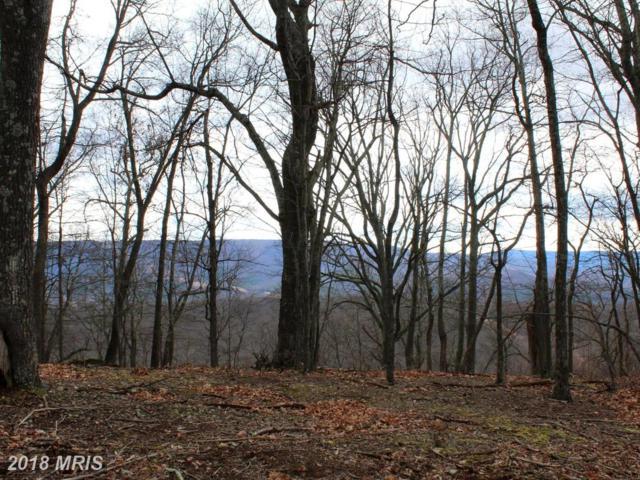 LOT 3 SEC3 High Knob Road, Old Fields, WV 26845 (#HD10202537) :: Advance Realty Bel Air, Inc