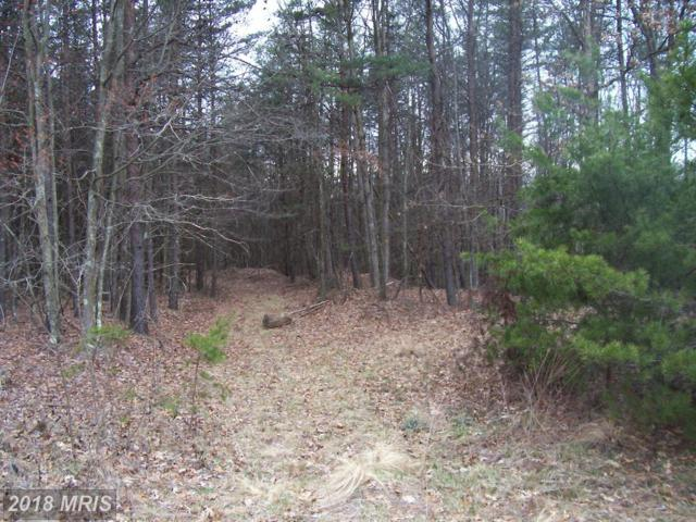 Lot 145 Trough View Road, Moorefield, WV 26836 (#HD10212855) :: Keller Williams Pat Hiban Real Estate Group