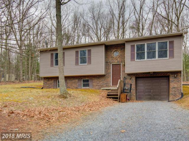 736 Warden Circle Road, Wardensville, WV 26851 (#HD10213227) :: Hill Crest Realty