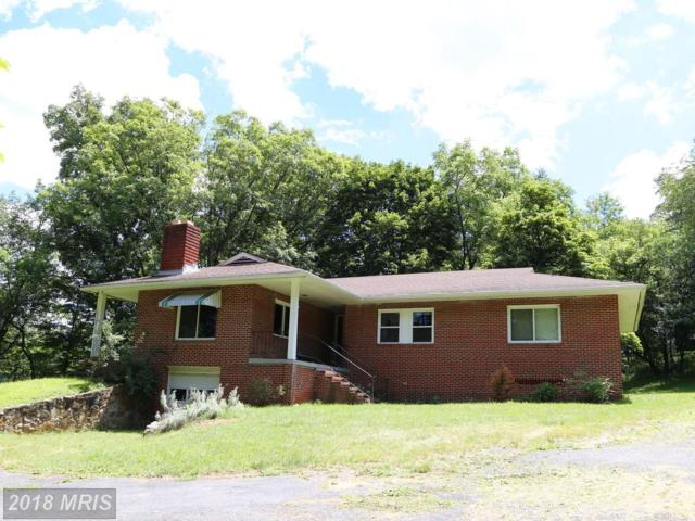 13540 Route 259, Mathias, WV 26812 (#HD10302165) :: Hill Crest Realty