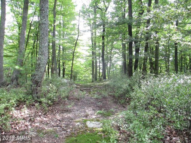 61 Baker Mountain, Wardensville, WV 26851 (#HD10325049) :: Fine Nest Realty Group