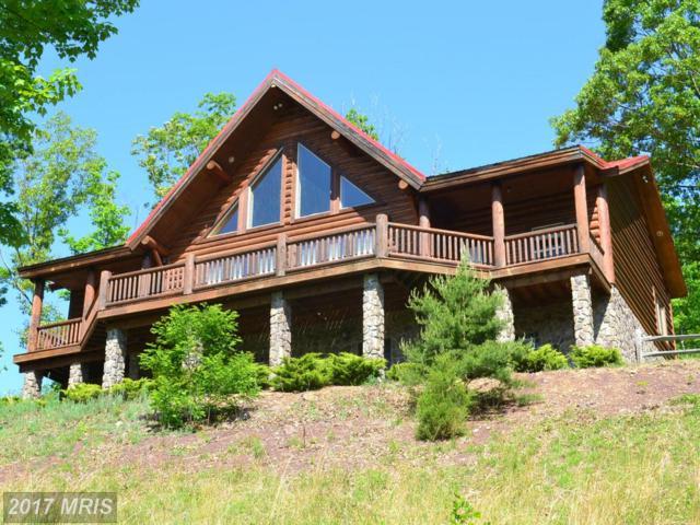 44 White Oak Pass, Mathias, WV 26812 (#HD8646025) :: Pearson Smith Realty