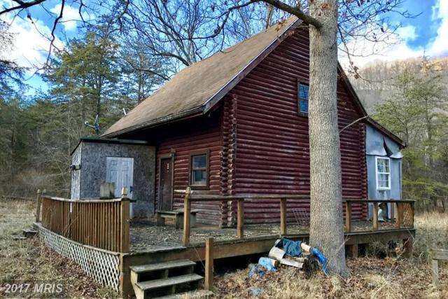 102 Mt Laurel Circle, Lost City, WV 26810 (#HD9866257) :: LoCoMusings