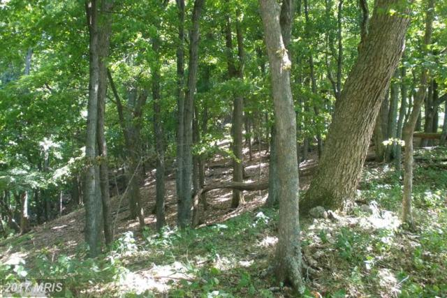 26 Hidden Hill Drive, Moorefield, WV 26836 (#HD9866541) :: Pearson Smith Realty