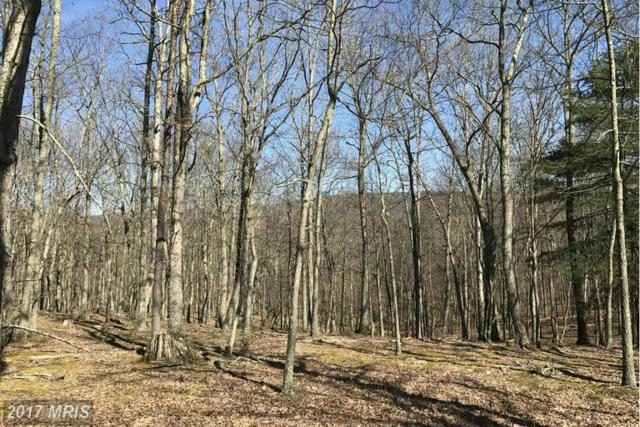 9 Ewing Drive, Baker, WV 26801 (#HD9898204) :: Pearson Smith Realty