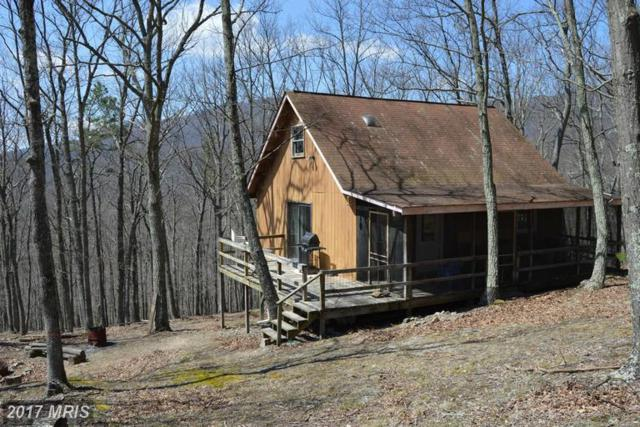 45 Mount Top Road, Mathias, WV 26812 (#HD9972273) :: Pearson Smith Realty