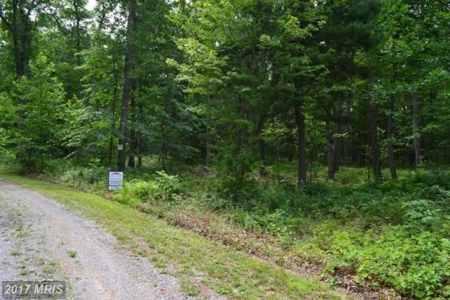 Hardwood Drive, Mathias, WV 26812 (#HD9983219) :: Pearson Smith Realty