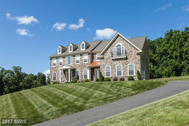 1429 Martin Meadows Drive, Fallston, MD 21047 (#HR10060853) :: Town & Country Real Estate