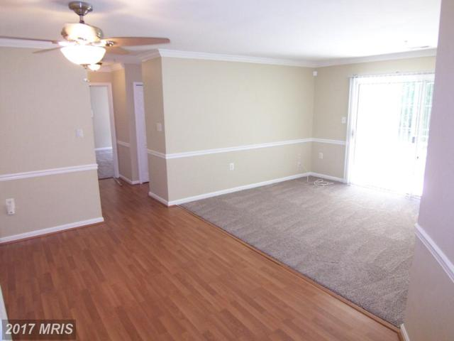 311-B Tall Pines Court #2, Abingdon, MD 21009 (#HR10063878) :: The Lingenfelter Team