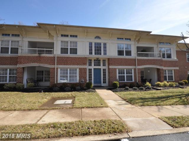 309-F Laurel Woods Drive #30, Abingdon, MD 21009 (#HR10161583) :: CR of Maryland