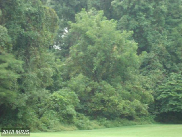 Windy Pine Drive, Churchville, MD 21028 (#HR10174310) :: Tessier Real Estate